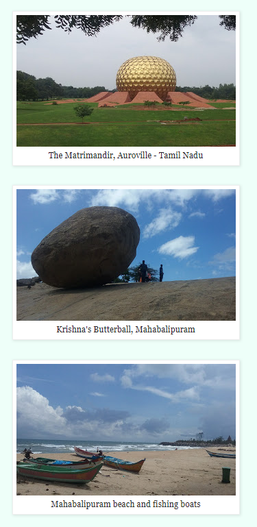 Ayla's photos of south india.PNG