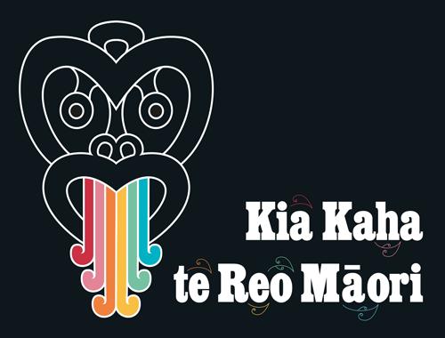 HDL-te-wiki-o-te-reo-maori-web-page-image-500x380